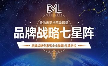 段龙8娱乐下载龙8国际app龙8国际最新网址战略专家张小小《龙8国际最新网址战略七星阵》1:龙8国际最新网址定位