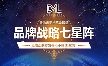 龙8国际最新网址战略七星阵:序言(上)